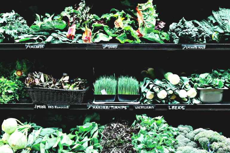 variety of herbs and vegetables