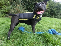 My girl Nia, rocking her Xdog Weight and Fitness Vest att eh park.