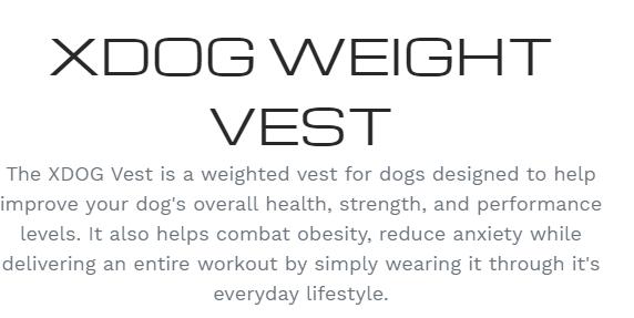 Xdog description